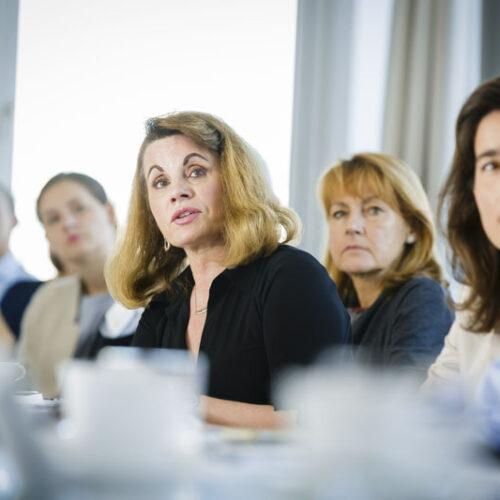 "Arbeitsgruppe Klima und Energie – ""Mission Innovation – Clean Energy Collaboration after Paris"""